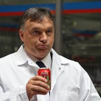 Vajon Orbán Viktor kiköpné?
