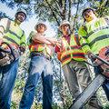 Győztünk: mostantól csak engedéllyel vághatók ki a fák Pesterzsébeten!
