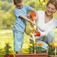 Szeretsz kertészkedni? Fontos a környezeted? Pályázz és nyerj!