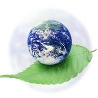 Értékeljük együtt a hivatal beszámolóját a kerület környezetvédelmi helyzetéről