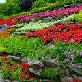Szeretsz kertészkedni? Május 15-ig még pályázhatsz!