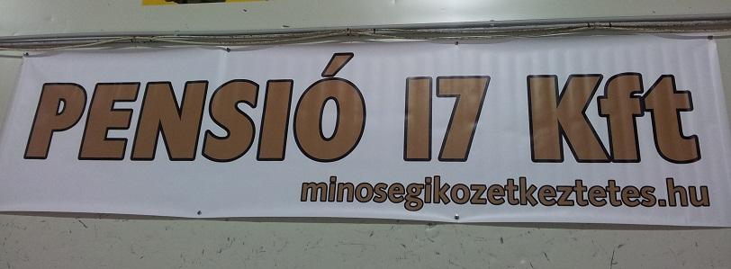 2013-02-17_16_01_22_1.jpg