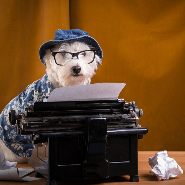 dog-writer2.jpg
