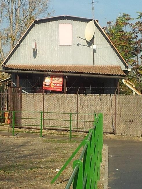 zebrás 1.jpg