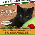Árva Állatok Mikulása 2018!