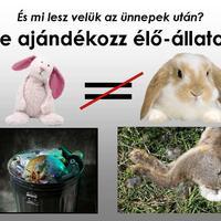 Ne ajándékozz élő állatot!