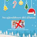 Ne ajándékozzatok élő állatot karácsonykor (sem)!