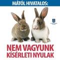 Végre tilos az állatokon tesztelt kozmetikai termékek árusítása!