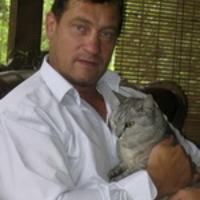 Árva cicákon segít Szikora és Jáksó