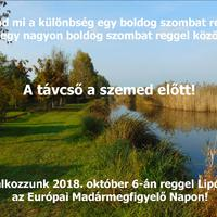 Európai Madármegfigyelő Nap Lipóton 2018.