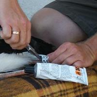 Magyar gyűrűs fehér gólyák leolvasása Izraelben