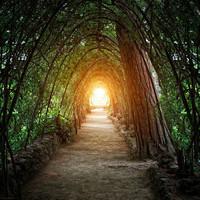 Titkos ösvény