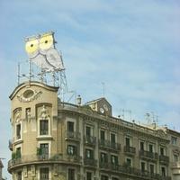 A barcelonai bagoly