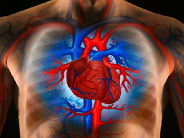 mit kell venni egy magas vérnyomásban szenvedő idős ember számára