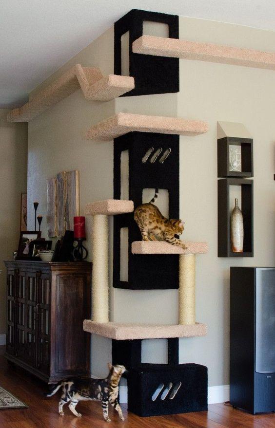 furniture-design-for-pet-lovers2e9a7429af59.jpg