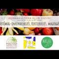 Permakultúra klub 2021/1: Vetőmag-önrendelkezés, kerttervezés, magfogás