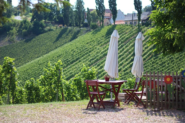 wine-road-3565497_640.jpg