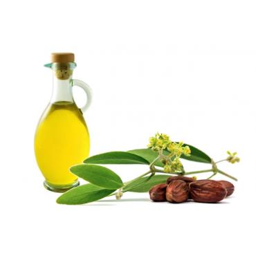 jojoba-oil-essential-oil-carrier-oil-oil-43a10ca478e1c775908893c31d665ad2.png