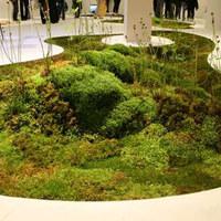 Költöztesd a házadba a természetet (2.)