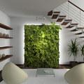 Költöztesd a házadba a természetet (1.)