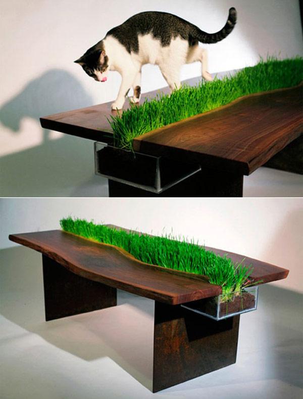 plants-furniture-1.jpg