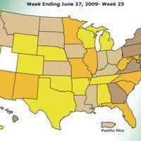 Hogy áll az USA H1N1 téren?