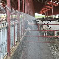 Válasz egy olvasónak - a tehenek hűtéséről