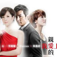 A Good Wife (2013)