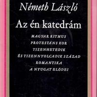 Rövid széljegyzet(ek) a Németh László-évhez (2011. július 25.)