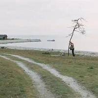 """Andrej Tarkovszkij adaléka a """"Nemzeti Együttműködés Rendszeré""""-hez"""