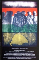 tornfromtheflag_a_lyukaszaszlo_film_dvdborit_131201_.jpg