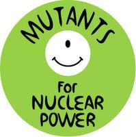 Elhallgatták, hogy a magyarok nem támogatják az atomot