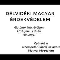 """Zsoldos Ferenc: """"Magyar"""" érdekképviselet?"""