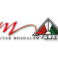 A Magyar Mozgalom – VMDK zentai képviselőcsoportja munkája