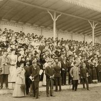 Extra: Lóversenyen (1905)