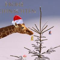 16 őszinte mondat karácsonyi ajándékkártyára