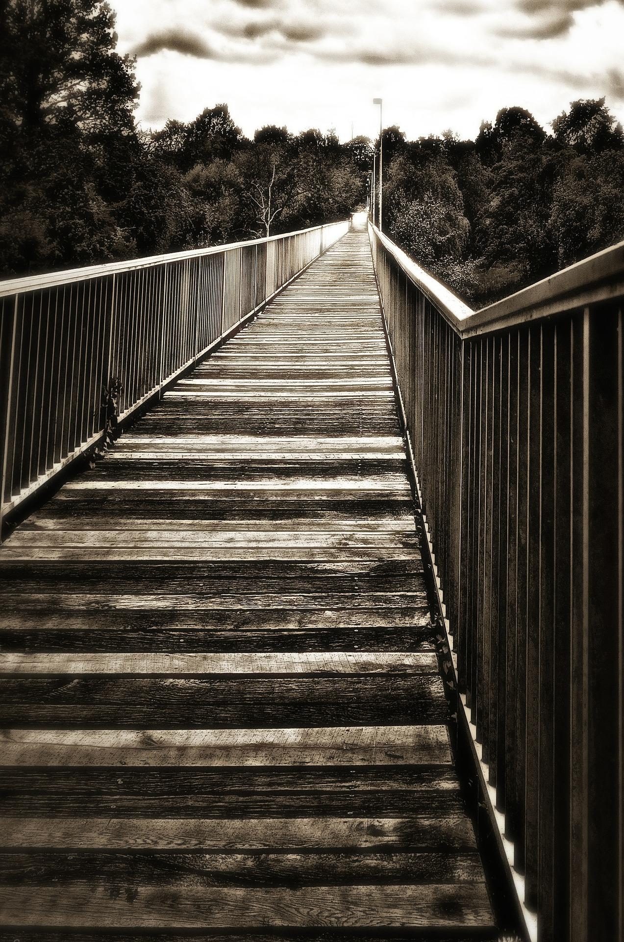 bridge-621522_1920.jpg