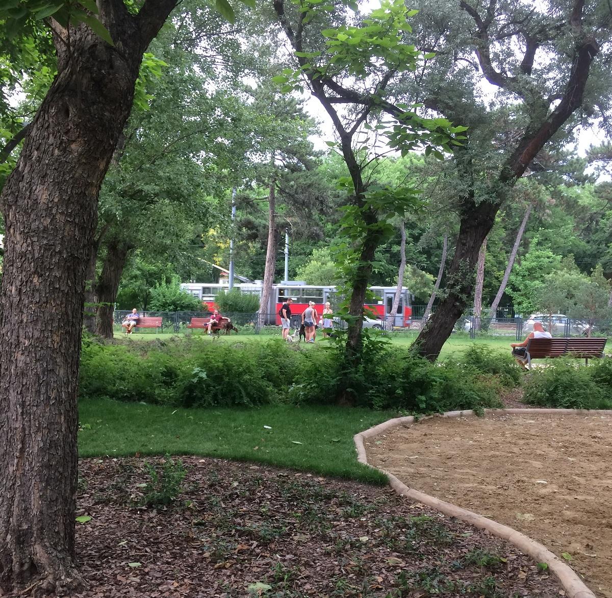 Ha ezt a szép parkot is tönkreteszik a kutyások, azt kire fogják kenni...?