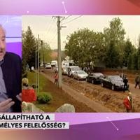 Magyar György: El a kezekkel a független bíróságoktól