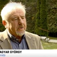 Viking-katasztrófa: Magyar György szerint szervezetlen és káoszszerű volt a mentés