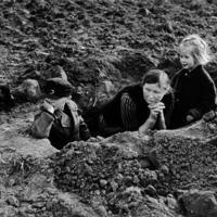 Fotó-kalendárium - Robert Capa