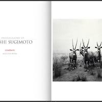 Portfólió – Hiroshi Sugimoto