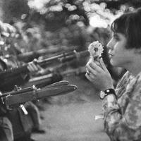 Variációk – Flower Power (1967-2011)