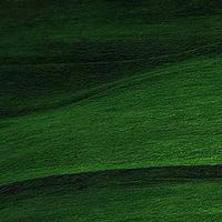 SZÍNKÉP - Zöld szerda (12-14 éves korcsoport)