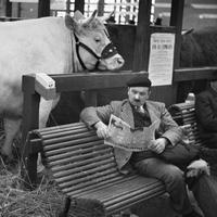Fotós idézet - André Kertész (1894-1985)