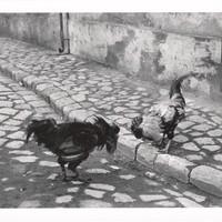 Fotó-kalendárium - André Kertész (1894 - 1985)