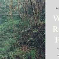 Hamarosan a Mai Manó Házban - Maija Tammi: White Rabbit Fever