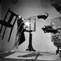 Közel 70 év után újrafényképezték Philippe Halsman Dalí Atomicus című ikonikus fotóját