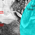 Tárlatvezetés Timár Katalin kurátorral a Bauhaus 100. A zseniális kísérletező: Moholy-Nagy László fotográfiái című tárlaton
