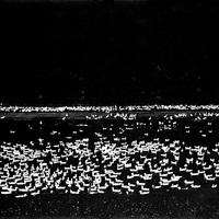 A HÉT FOTÓSA: Dr. Szász János - Válogatás a fehér és fekete képekből